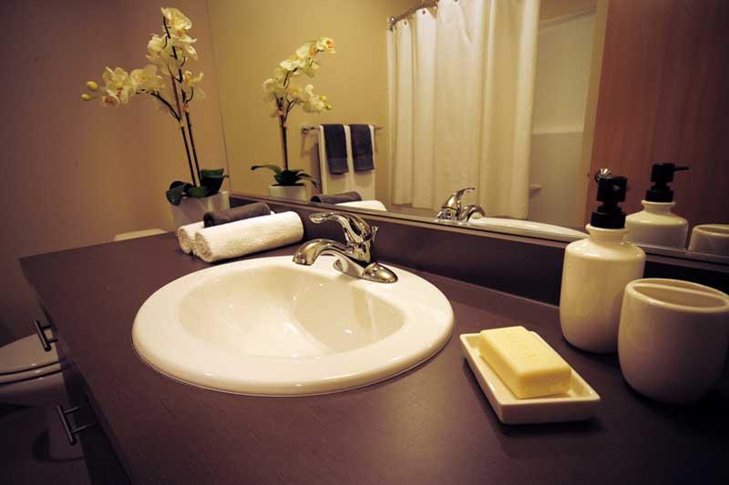 525 at the enclave luxury apartments neighborhood community northlake seattle wa studio 2